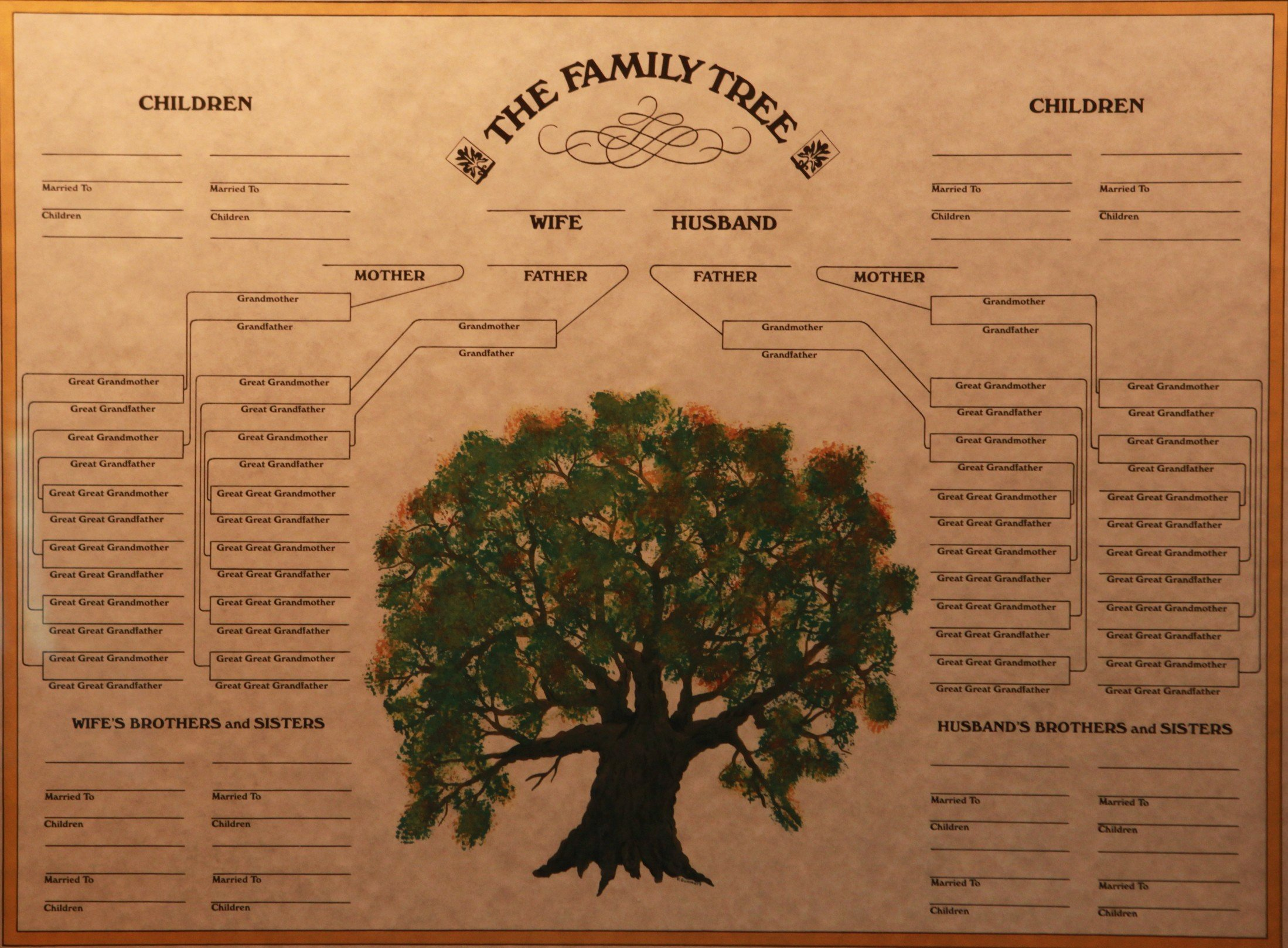 Blank Family Tree Book Beautiful Family Tree Certificate Museum Store