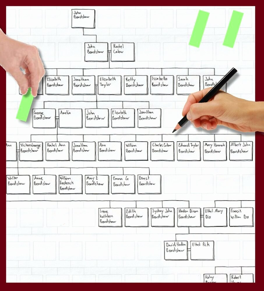 Blank Family Tree Book Beautiful Family Tree Genealogy Blank Working Chart