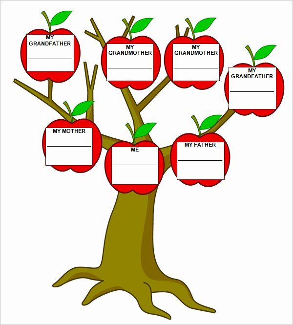 Blank Family Tree Book Lovely Blank Family Tree Template – 31 Free Word Pdf Documents Download