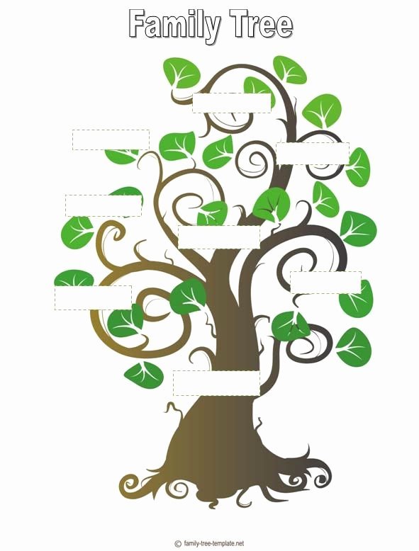 Blank Family Tree Book Lovely Blank Family Tree Template for Kids Activity Day Ideas Pinterest