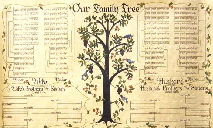 Blank Family Tree Book Luxury 7 Tips for Researching Your Family Tree
