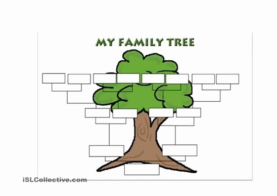 Blank Family Tree Book New A Simple Template for Students to Create their Own Family Tree Esl Worksheets