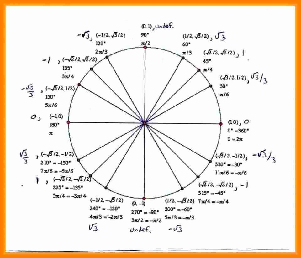 Blank Unit Circle Pdf Elegant 8 Unit Circle Template