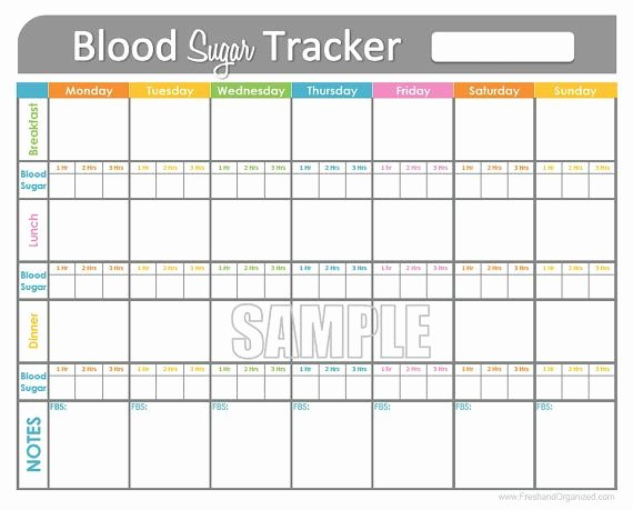 Blood Sugar Log Excel Best Of Blood Sugar Log Template In Pdf format Excel Template