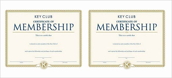Booster Club Treasurer Report Template Luxury Club Treasurer Report Template Treasurer Report Template 10 Free Sample Example format