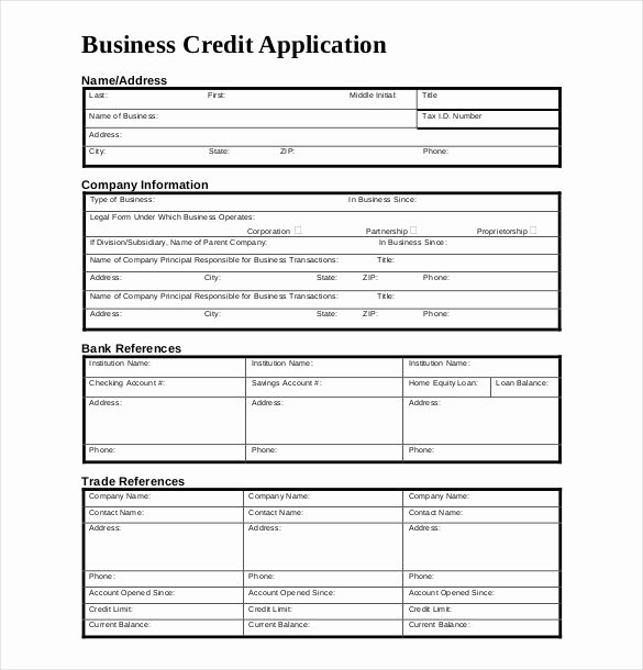 Business Credit Application Pdf New Credit Application Template 33 Examples In Pdf Word