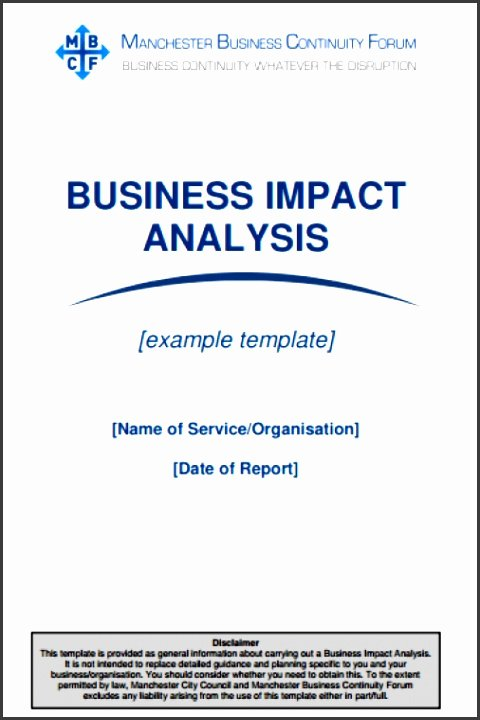 Business Impact Analysis Template Excel New 5 Business Impact Analysis Template Word Sampletemplatess Sampletemplatess
