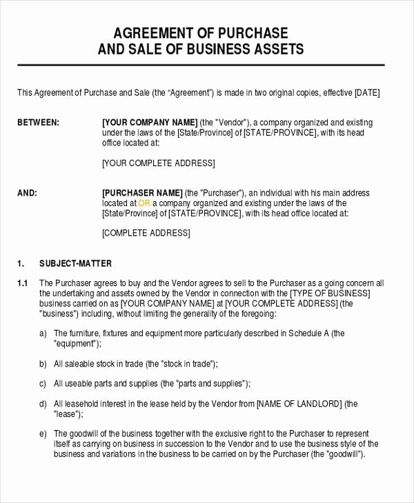Business Purchase Agreement Pdf Beautiful Business Agreement form