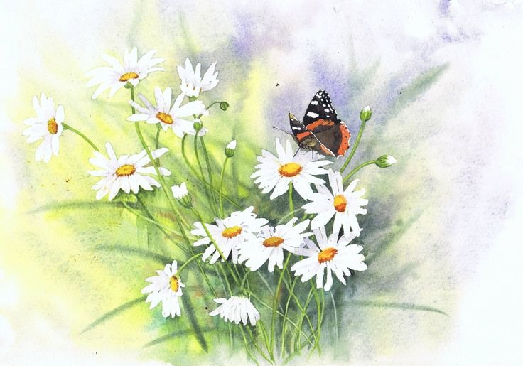 Butterfly and Flower Paintings Awesome 151 Best Images About butterfly and Flower Paintings On Pinterest