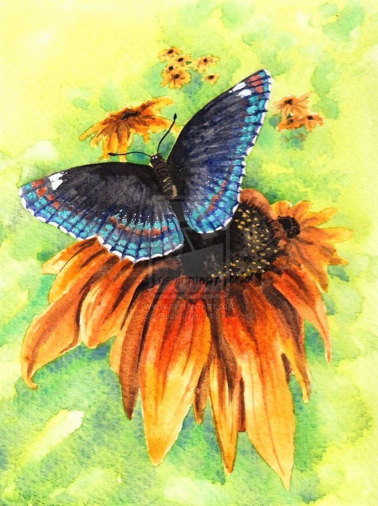 Butterfly and Flower Paintings Elegant 151 Best Images About butterfly and Flower Paintings On Pinterest