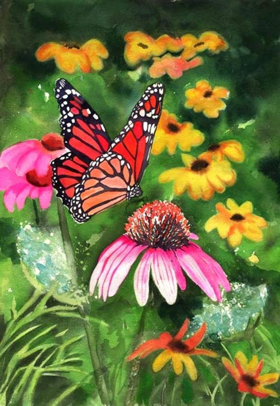 Butterfly and Flower Paintings Lovely Flower butterfly Cone Flower Print Of An Art Watercolor