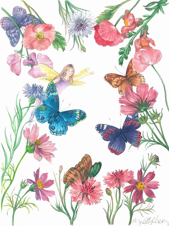 Butterfly and Flower Paintings Lovely Flower Fairy Illustrated butterfly Painting by Judith Cheng