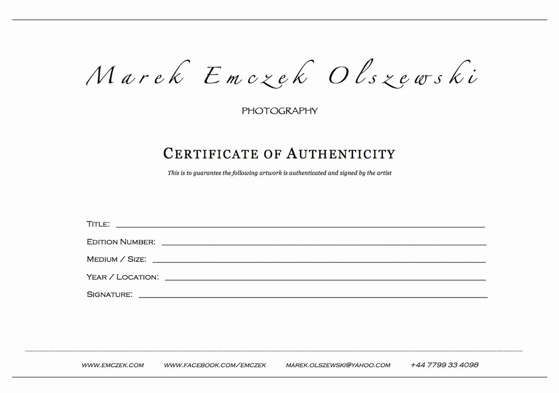 Certificate Of Authenticity Artwork Template Awesome Certificate Authenticity Graphy – Planner Template Free