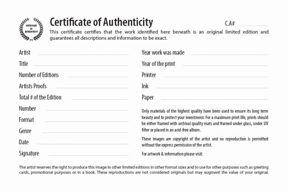 Certificate Of Authenticity Artwork Template Awesome Certificate Of Authenticity Free Editable Template