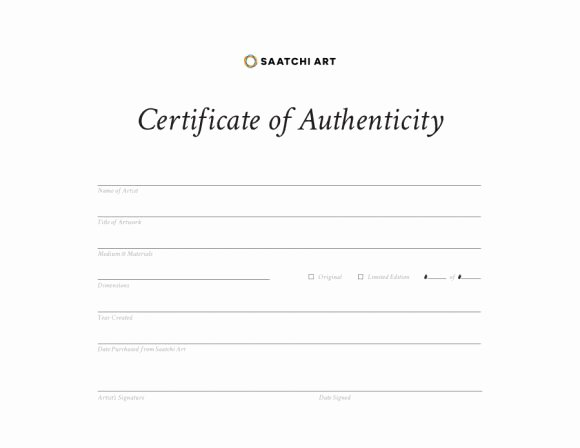 Certificate Of Authenticity Autograph Template Beautiful Certificate Of Authenticity Msword Doc