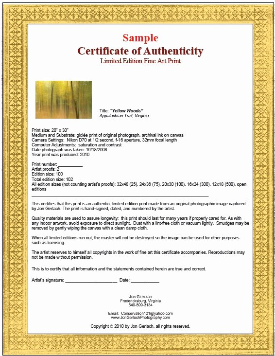 Certificate Of Authenticity Autograph Template Luxury 7 Free Sample Authenticity Certificate Templates