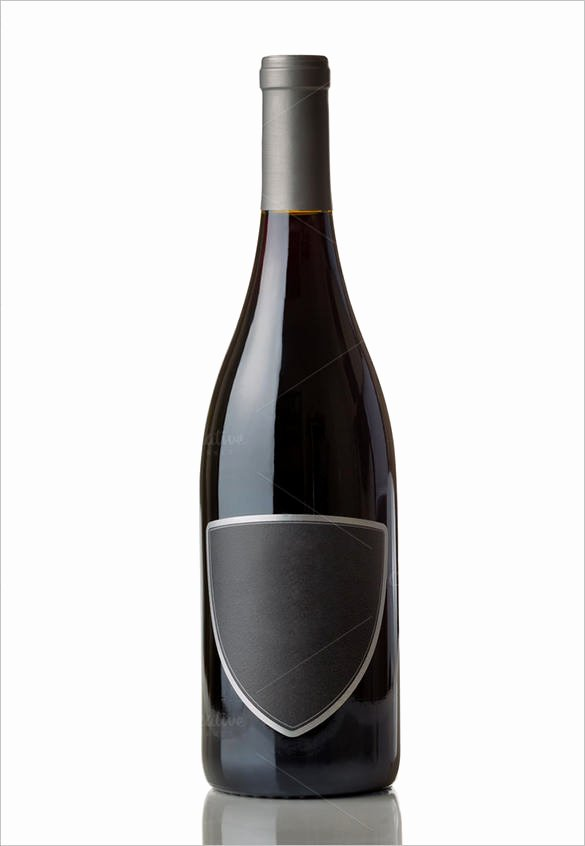 Champagne Bottle Label Template Elegant 35 Wine Label Templates