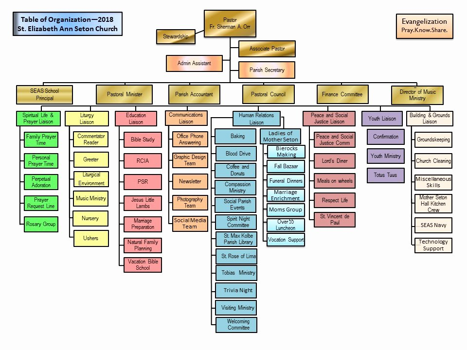 Church organizational Structure Chart Best Of Parish organizational Chart