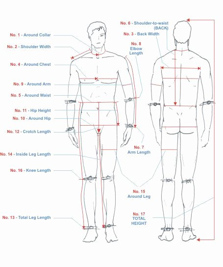 Clothing Size Chart Template Beautiful Do You Know How to Take Measure Of Your Body Here A Step by Step Guide