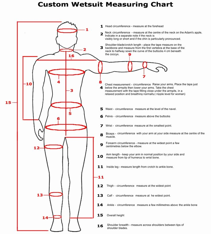 Clothing Size Chart Template Elegant Custom Wetsuit Measurement Chart How to Take Measurements