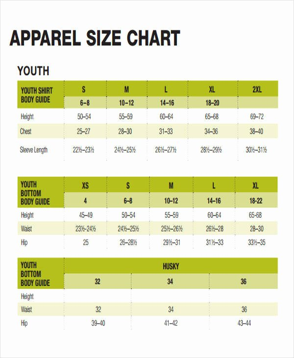 Clothing Size Chart Template Inspirational 48 Printable Chart Templates