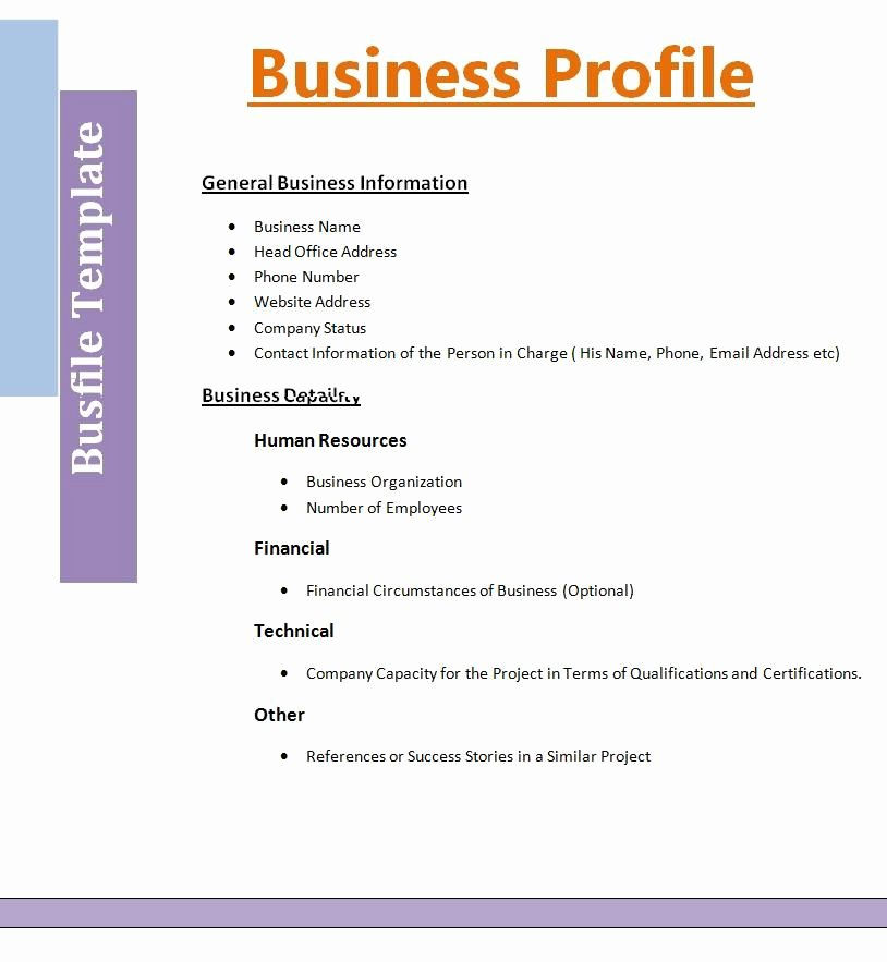Construction Business Plan Template Word Inspirational Business Profile Template Profile