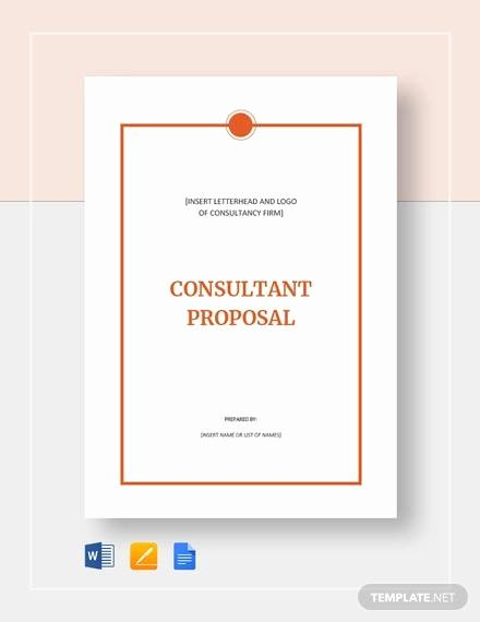 Consulting Proposal Sample Pdf Awesome Sample Consultant Proposal 11 Documents In Pdf Word