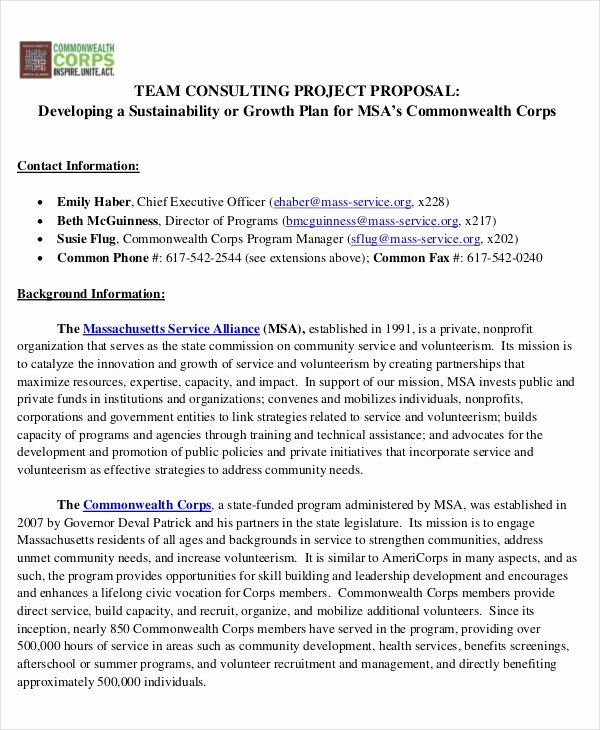 Consulting Proposal Sample Pdf Luxury 41 Project Proposal In Pdf