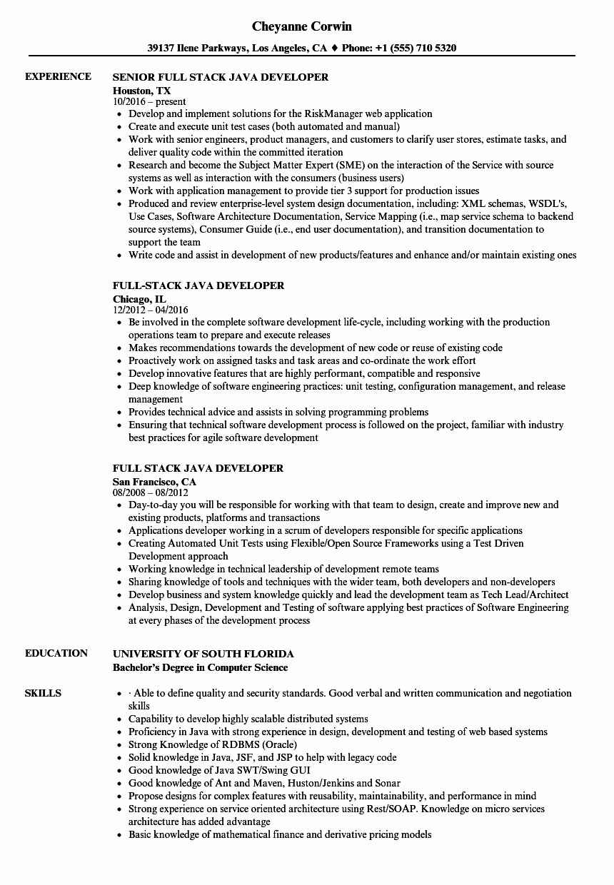 Core Java Developer Resume Elegant Full Stack Java Developer Resume Samples