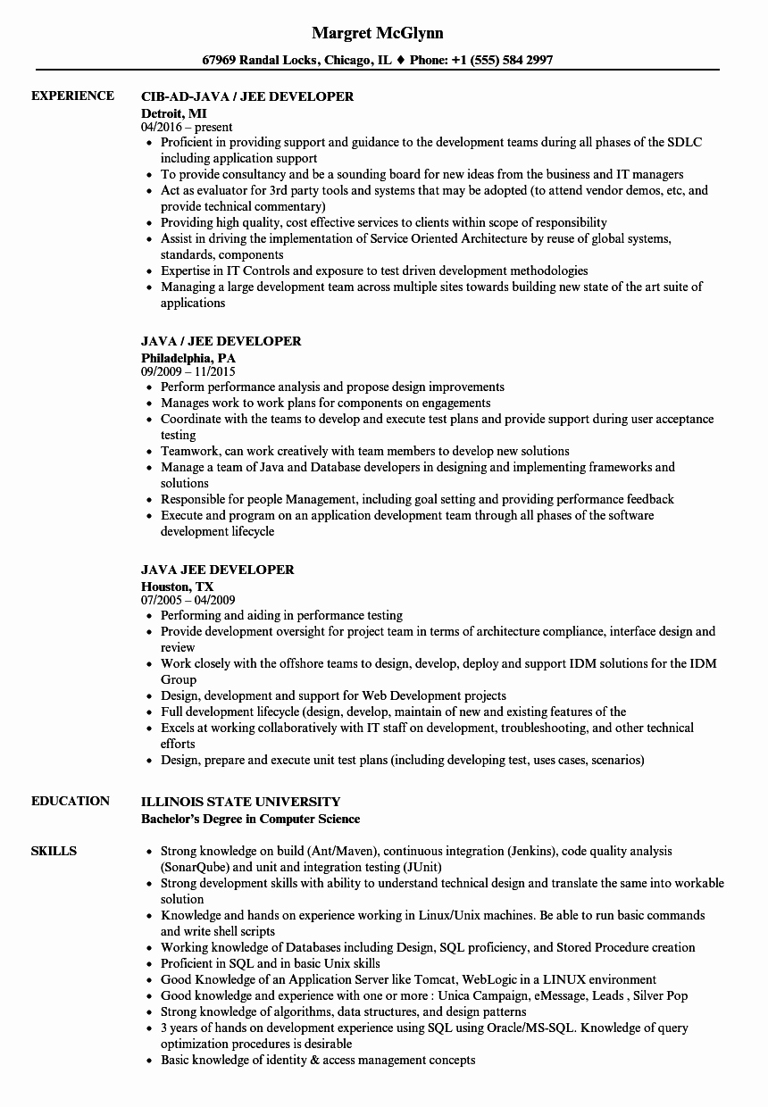 Core Java Developer Resume Elegant Java Jee Developer Resume Samples