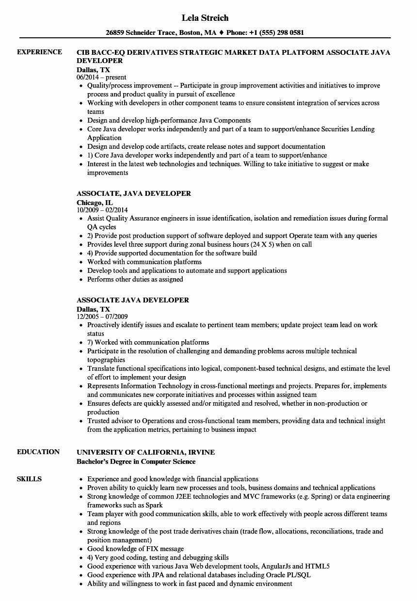 Core Java Developer Resume New associate Java Developer Resume Samples