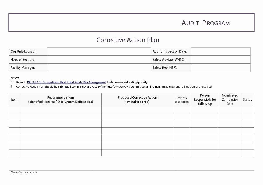 Corrective Action Plan Template Word Unique Corrective Action Plan Template