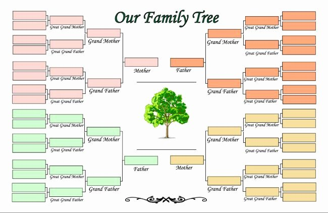 Create Family Tree In Word Elegant Printable Family Tree Maker Template