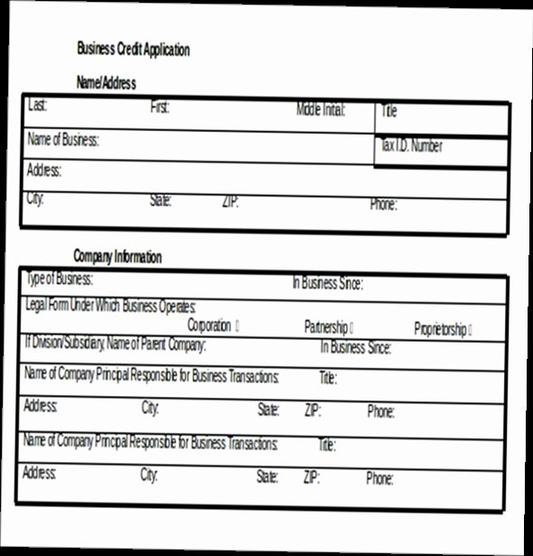 Credit Application form Pdf Luxury Business Credit Application form Pdf