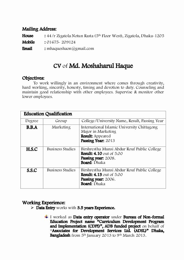 Curriculum Vitae Examples Pdf Best Of Cv Sample