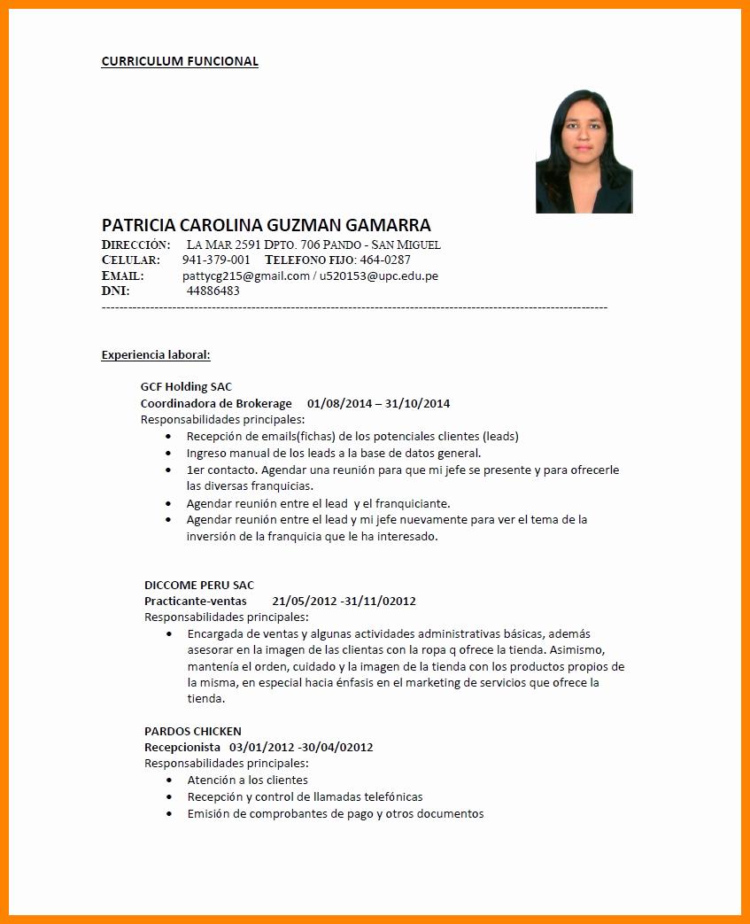 Curriculum Vitae Examples Pdf Lovely 6 Curriculum Vitae Exemplos Pdf