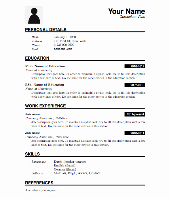 Curriculum Vitae Examples Pdf Unique Professional Cv format In Ms Word Doc Free Download Pdf