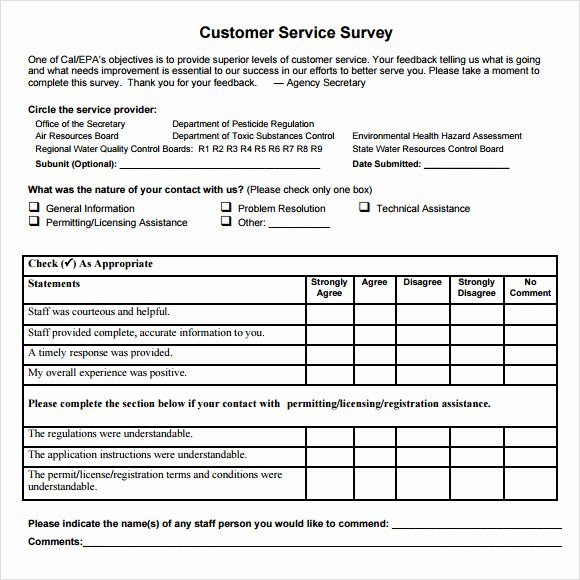 Customer Satisfaction Questionnaire Pdf Best Of 6 Consumer Questionnaire Examples Pdf