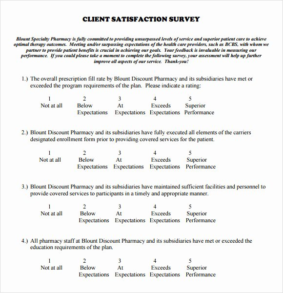 Customer Satisfaction Questionnaire Pdf Best Of Free 6 Client Satisfaction Survey Samples In Pdf