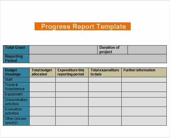 Daily Progress Report Template Fresh 4 Daily Progress Report Templates Writing Word Excel format