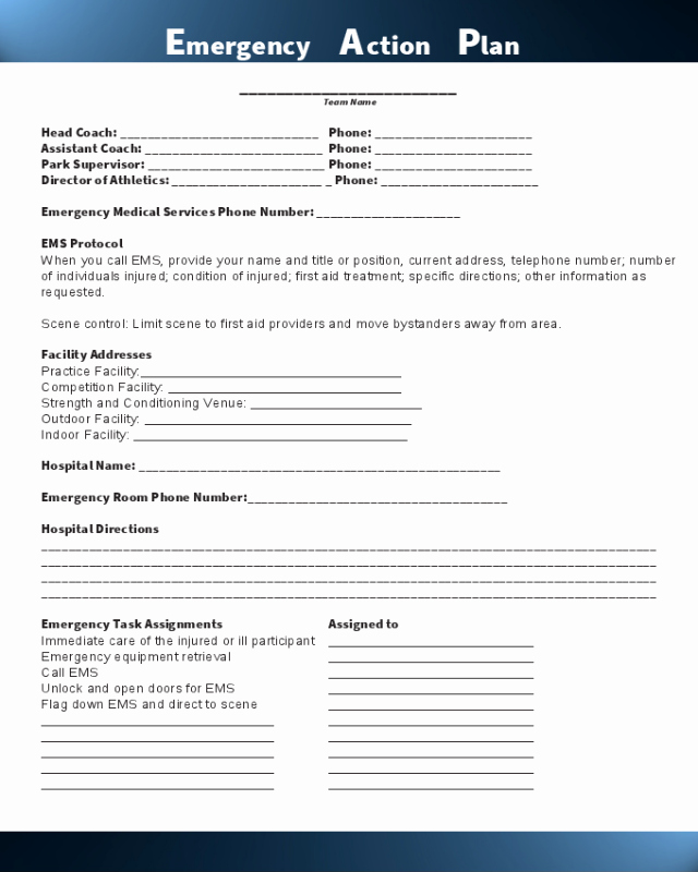 Dental Treatment Plan form Fresh 2019 Action Plan Template Fillable Printable Pdf & forms