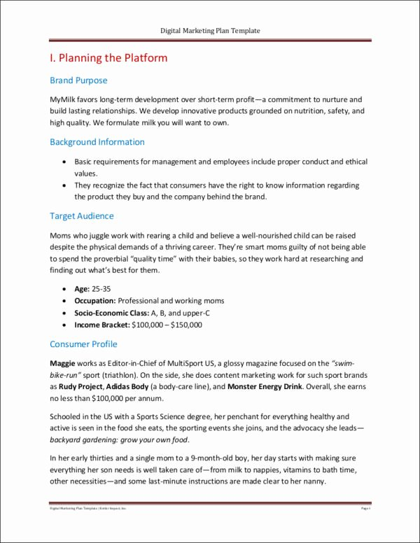 Digital Marketing Proposal Template Lovely Free 25 Marketing Samples & Templates In Pdf