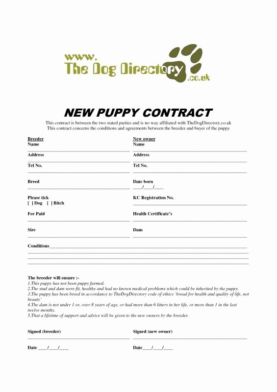 Dog Bill Of Sale Unique Puppy Bill Sale