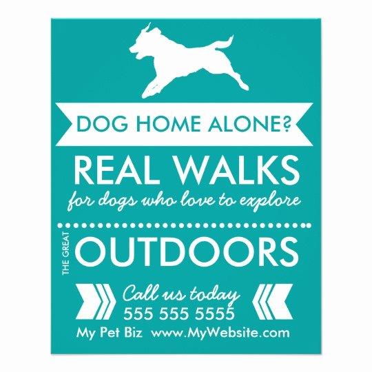 Dog Walking Flyer Template Elegant Dog Walker Flyer Personalizable