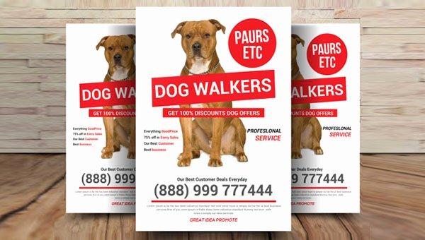 Dog Walking Flyer Templates Free Awesome 26 Dog Walker Flyer Templates Free & Premium Psd Vector Downloads