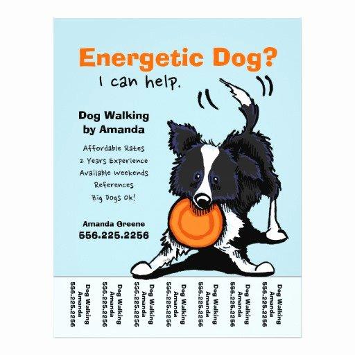 Dog Walking Flyer Templates Free Elegant Dog Walking Posters