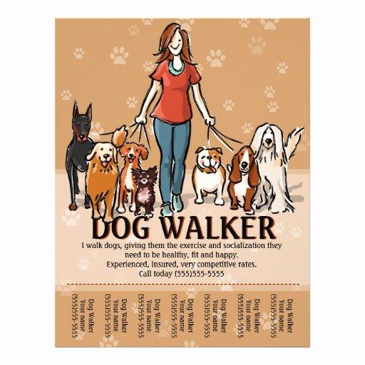 Dog Walking Flyer Templates Free Fresh Dog Walker Dog Walking Advertising Template Flyer