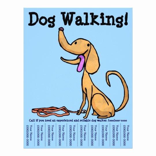 Dog Walking Flyer Templates Free Luxury Dog Walking Flyer