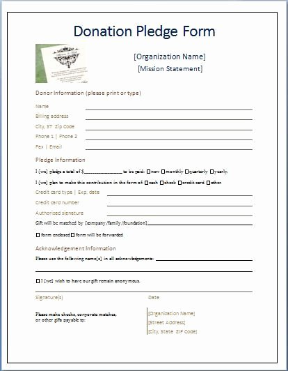 Donation form Template Word Awesome Sample Donation Pledge form
