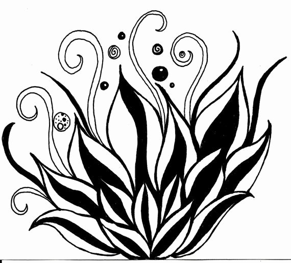 Draw Black and White Fresh Black and White Art Pen and Ink Lotus Flower Illustration Signed 5 X 7 Print Home Decor Design